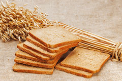 Chunks of bread and ears of rye on natural background. Royalty Free Stock Image
