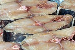 Chunks of raw marine fish Stock Photography