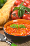 Chunky Tomato Soup Royalty Free Stock Image
