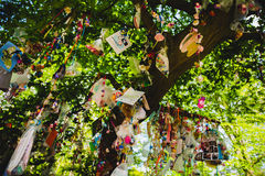 Chupeta, manequim, bico ou soother na árvore Fotografia de Stock