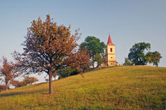 Church. Trees, meadow and the church stock photo