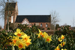 Church. In denmark a sunny summer day with flowers in the foreground (focus in on flowers stock photo