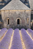 Church at Abbaye de Senanque, Provence, France Stock Photography