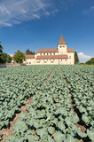 Church with agriculture Royalty Free Stock Photo