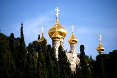 Church of all Nations - Jerusalem. Church of all Nations amongst forest of trees in Jerusalem, Israel Stock Image