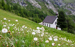 Church in the Alps. Dandelion in the foreground, in the background church Royalty Free Stock Photo