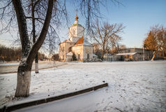 Church of the Assumption. The church with the golden dome  through the lace of winter twigs Stock Photography