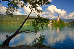 Church of the Assumption in Lake Bled with the castle in the bac Royalty Free Stock Photography