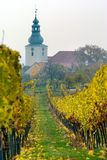 Church in autumnal wineyard Royalty Free Stock Photos