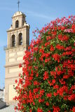 Church behind red shrub. Church front behind a bright red shrub Stock Image