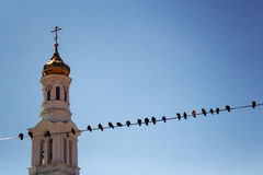 Church bell tower with pigeons in the foreground and blue sky. Church bell tower with pigeons sitting in a row on a cable in the front Stock Images