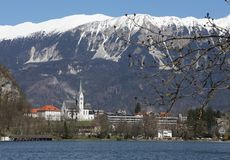 Church with Bell Tower on the shore of Lake BLED in Slovenia Royalty Free Stock Image