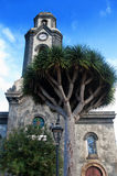 Church with big draco tree Royalty Free Stock Photography