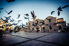 Church with birds in Larnaca, Cyprus Royalty Free Stock Image