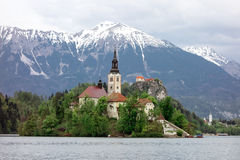 Church in the Bled lake Stock Images
