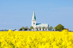 Church in a canola field stock photo