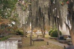 Church Cemetery stock image