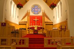 Church chancel and poinsettias royalty free stock image