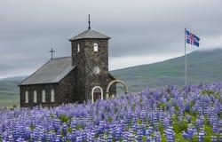 Church Dingeyrar Iceland Stock Photos