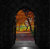 Church doors opening out onto beautiful, colorful forest Stock Images