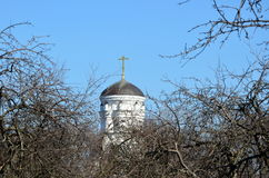 Church in the early spring. It is surrounded by large dushes Stock Photography