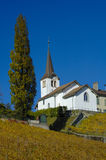 The church at Fechy. The hilltop church in the little Swiss wine-growing village of Fechy, canton Vaud, with autumn vineyards in the foreground Royalty Free Stock Photography