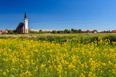 Church and flower field on a sunny day Stock Image