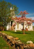 Church a flowering tree royalty free stock photo