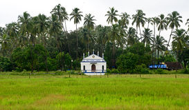 Church in Goa. In between the green fields royalty free stock photo
