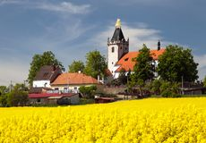 Church and golden rapeseed field (brassica napus) Royalty Free Stock Photo