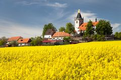 Church and golden rapeseed field (brassica napus) Royalty Free Stock Images