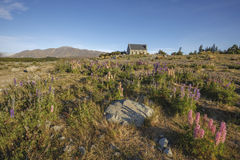 Church of the Good Shepherd, Lake Tekapo, New Zealand Royalty Free Stock Photography