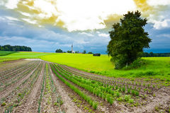 Church on the Hill. Plantation of Onions and Church on the Hill in Bavaria, Germany Stock Photos