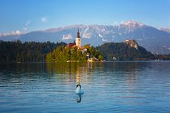 Church on island in Lake Bled Stock Image