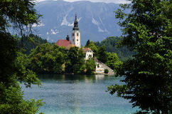 Church at lake Bled, Slovenia. Church on a island in the middle of the lake Bled, Slovenia Stock Image