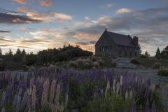Church and lupines blossom at Lake Tekapo, New Zealand Stock Photo