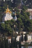 The Church of Mary Magdalene Royalty Free Stock Photo