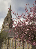 Church and monument. Large church with steeple behind blooming trees Stock Photography