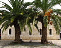 Church of Multiplication, Tabgha, Israel Stock Photos
