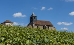 Mutigny Church Vineyard. The church of Mutigny in Champagen-Ardenne with Champagne vineyards in the summer, France Royalty Free Stock Photography