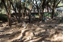 Church in the Northern Stelae Park of Aksum, Ethiopia royalty free stock photo