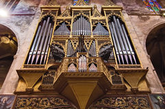 Church organ Stock Images
