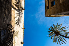 Church, palace and a palm tree in Barcelona stock photography