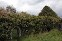 Church ruins nearl Castle Kilcoe. 13th century Church located near Ballydehob and roaring water bay, West cork Ireland Stock Photos