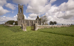 Church Ruins. Old abandoned church (Ballinafagh) ruins in Ireland royalty free stock photo