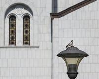 Church of Saint Sava in Belgrade Royalty Free Stock Image