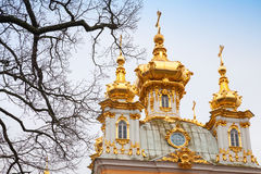 Church of Saints Peter and Paul in Peterhof by Rastrelli Stock Images