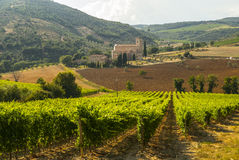 Sant'Antimo (Tuscany) Stock Photo