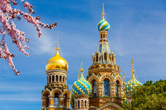 Church of the Savior on Spilled Blood. In St. Petersburg, Russia Stock Images