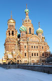 Church of the Savior on Spilled Blood in St. Petersburg Stock Image